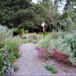 Peace Garden. Photo: Veronica Bowers
